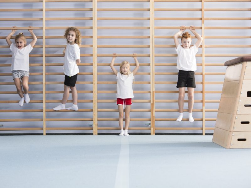 Young, active school boys and girls standing and hanging from wall bars, warming up for physical education athletics class